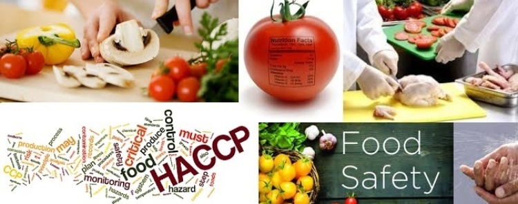 Food Safety and Hygiene Traning Consultants